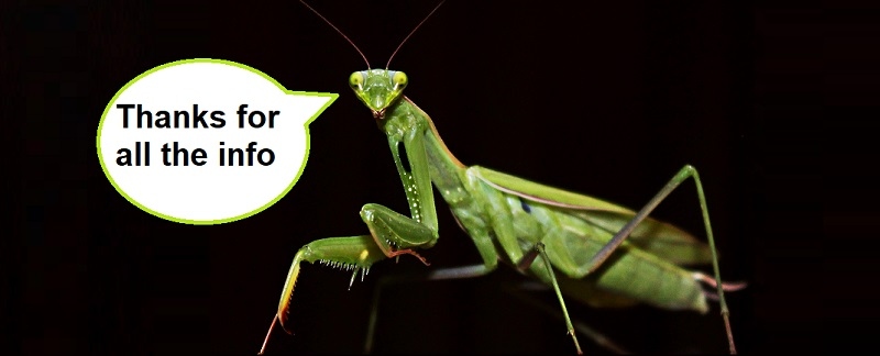 Roaming Mantis Malware Hijacking Two-Factor Authentication From Online Banking
