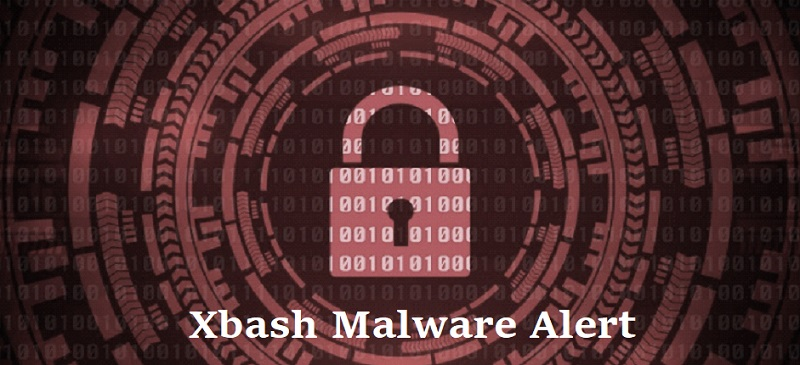 New Malware Bashes Victims With A Multitude Of Techniques